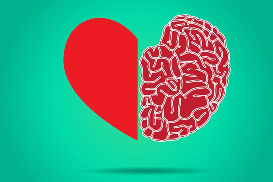 intelligenza emotiva pe ril successo